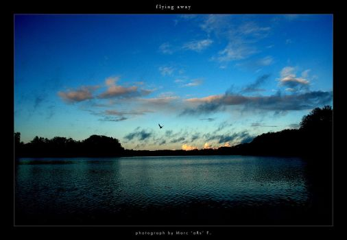 _flying away by pm-grafix