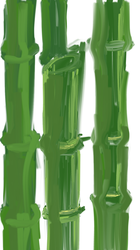 Bamboo Study by Cassiusthedemon