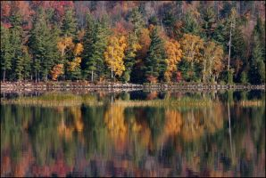 Reflected Autumn - Oct 2008 by pearwood