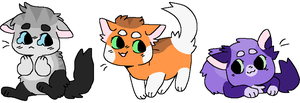Adoptable cats ( #1 ON HOLD) by DisguiserKitty