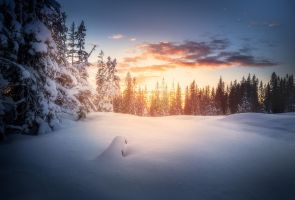 Winter sunset by streamweb