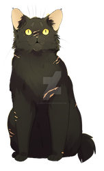 Yellowfang by DannoItanArt