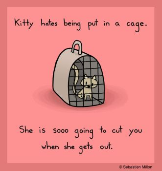 Kitty in a Cage by sebreg