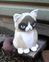 Grumpy Cat Plushie by TsukiGalaxy