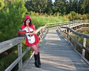 Little Red Riding Hood by Comixbookgurl