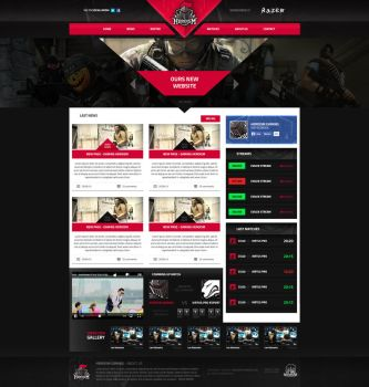 Web design for a team-heroism by MYeSportdesign