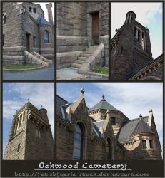 Oakwood Cemetery by fetishfaerie-stock