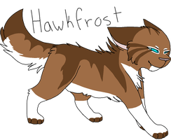 37 Hawkfrost (Re-upload) by Icedog-McMuffin