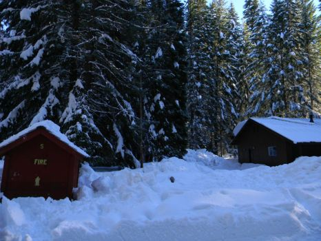 Snowy cabin, this place was wonderful! by The-Lover-Of-Life
