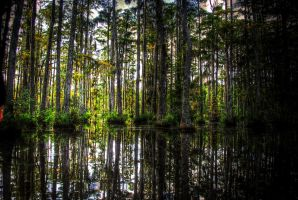 Blackwater I by NullCoding