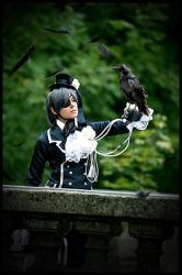 Kuroshitsuji - His Servant, the Raven by Evil-Uke-Sora