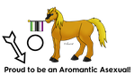 Proud to be an Aromantic Asexual by horse14t