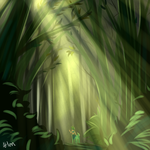 Forest by k125125123