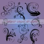 Vector Decor Brushes by Flina-Stock