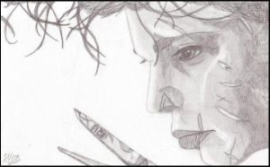 Edward Scissorhands... by Sarah-Vafidis