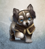 Husky Adoptable (sold) by Nordeva