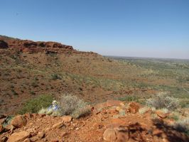 Kings Canyon - Our Final Moments by TricoloreOne77