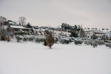 Under the Snow 09 by adapanich