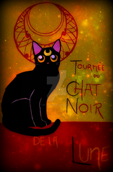 Chat Noir - Sailor Moon by ArtlessDesigns