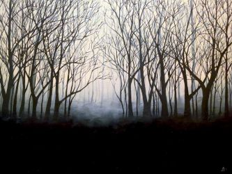 Gloomy Forest by shereline