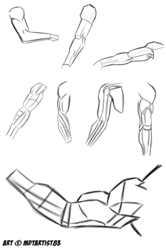 Arm Muscle Practices by MDTartist83