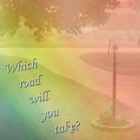 Which road will you take by NicoleWeeks