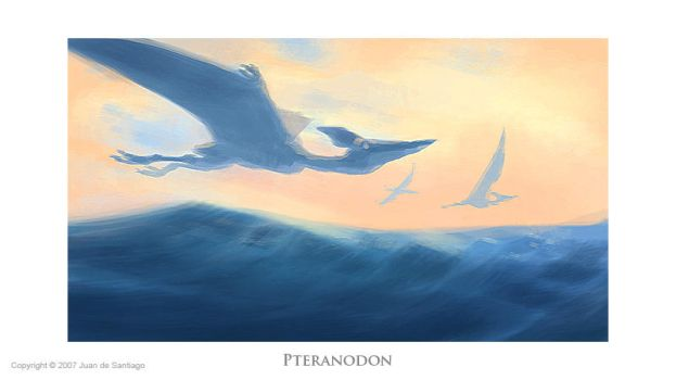 Pteranodon by Red-Dilopho