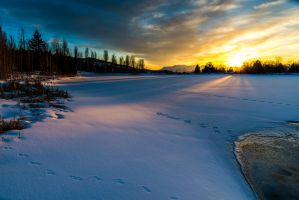 Sunset pond by Willied2111