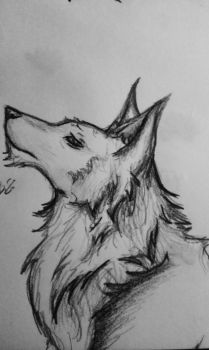 Yet another wolf... by Bianca-Szentpeteri