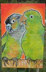 Pet portrait parrots by jupiterjenny