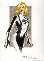 Invisible Woman by ToddNauck