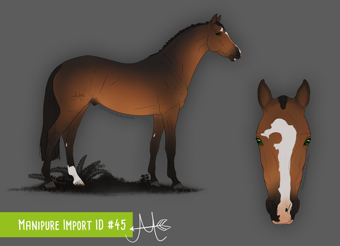 Manipure Import 45 / for CalyArt by chelissima