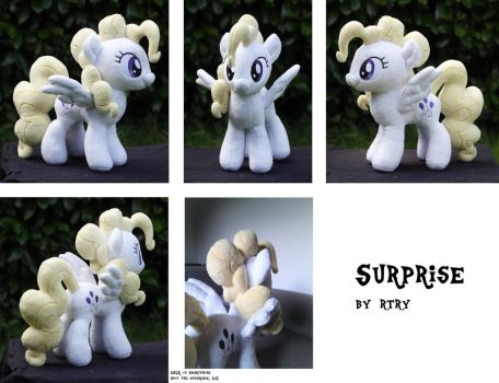 Surprise! by rtry