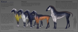 Kale [species sheet] by AniutqaART