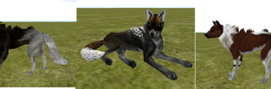 UPDATED-Free Wolf Bundle (Download in Description) by Skatland