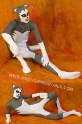 Grey spandex husky, 2-of-3 by Mystic-Creatures