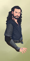 the Oakenshield by CattSparrow