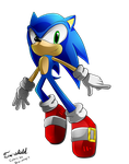 This is that blue hedgehog Sonic by Tri-shield