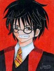 James Potter by xxbleedingdreamerxx