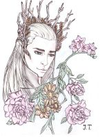 Thranduil by Jill-Summers