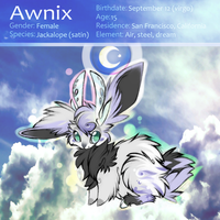Awnix (fursona) Reference by quickspace