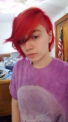 Got my hair cut and dyed by Wolfmist01