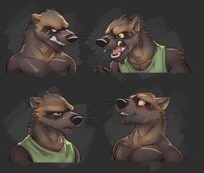 Commission: Lucas Blackclaw's Expression Sheet by Temiree
