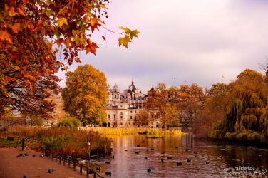 Autumn Afternoon by Wintertale-eu