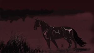 Black horse by AlinaRettler