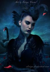 Black Swan Girl by silviya