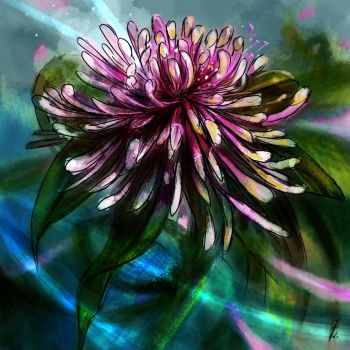 flower, brush/blending modes exc. by deadmanone
