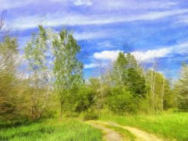 Path Through the Trees by oldhippieart