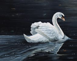 The Swan by Vanory