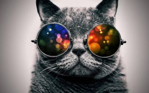 Cool Cat: Color by ToValhalla